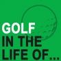 Artwork for How to Become a Successful Elite Golf Coach w/ VJ Trolio