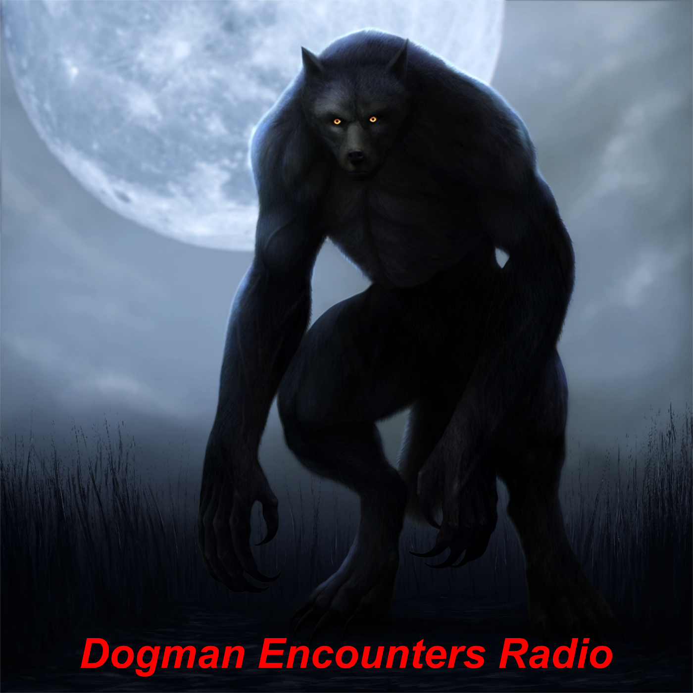 Dogman Encounters Radio show art