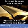 Artwork for #1 Primeros Principios / First Principles | Que Es La Biblia / What Is The Bible