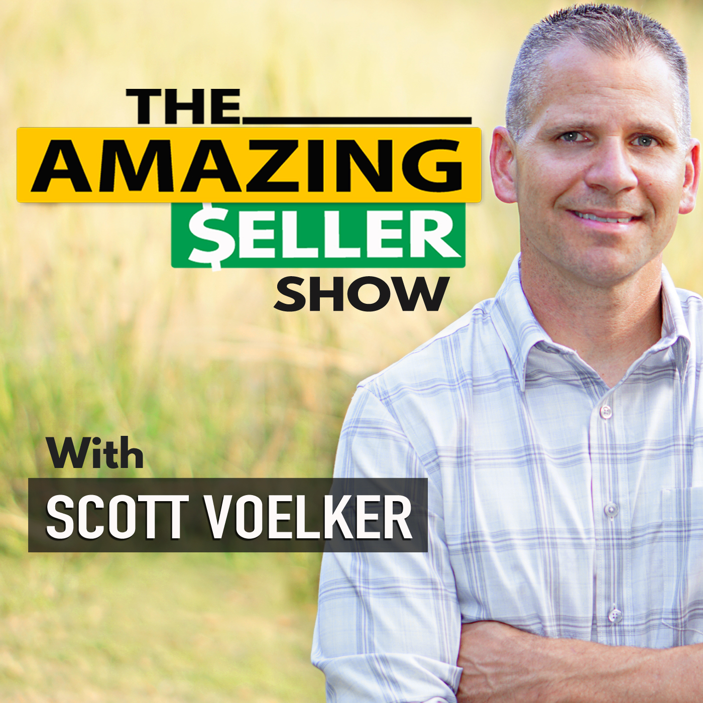 The Amazing Seller Podcast show art