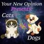 Artwork for E13- Cats Vs Dogs