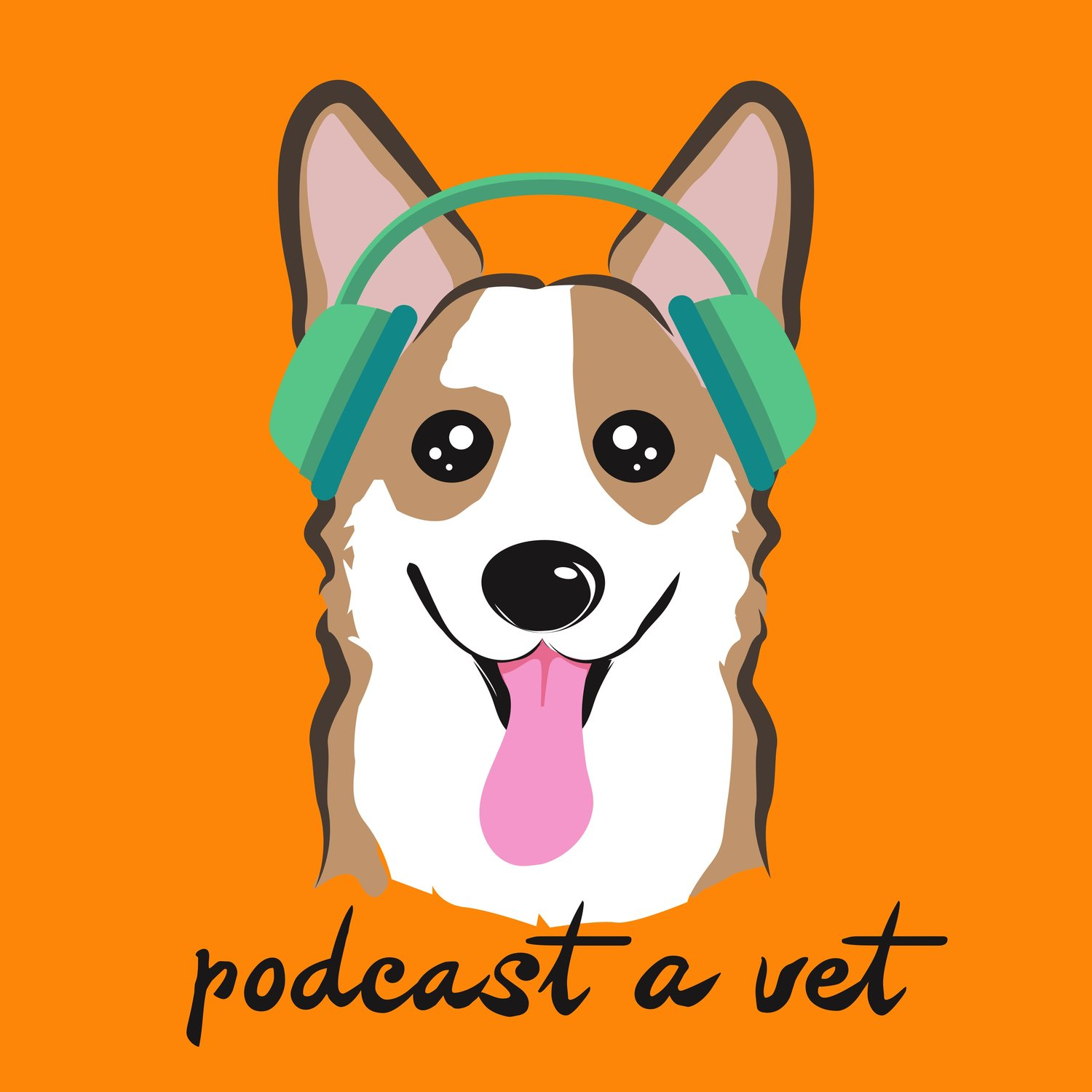 Podcast A Vet: Stories, Support & Community From Leaders In The Veterinary Field  show art