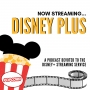Artwork for Now Streaming Disney Plus: Accessibility Features and Options