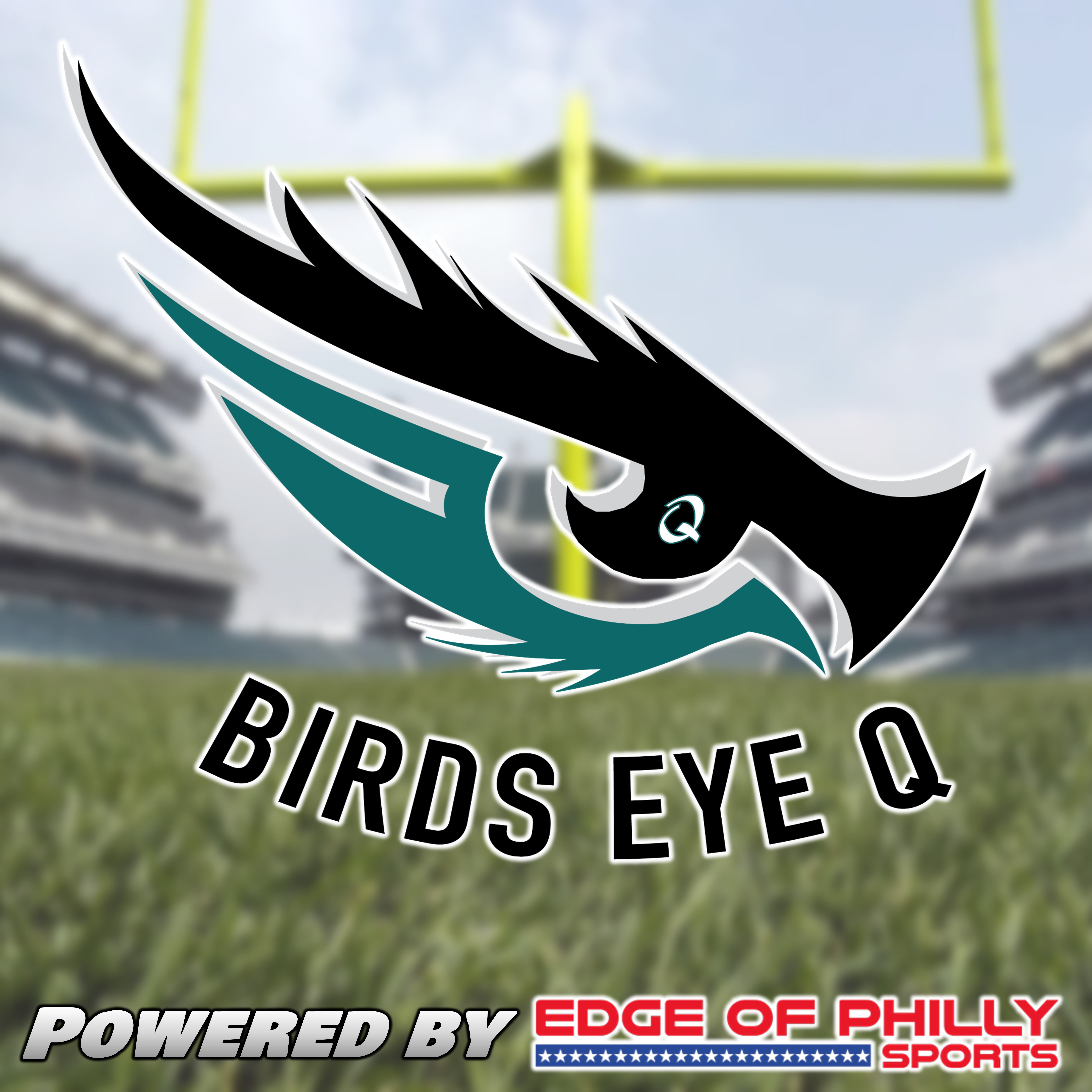 Birds Eye Q - Eagles 2020 Season is Finally Over show art
