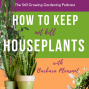 Artwork for How to Keep – Not Kill – Houseplants with Barbara Pleasant