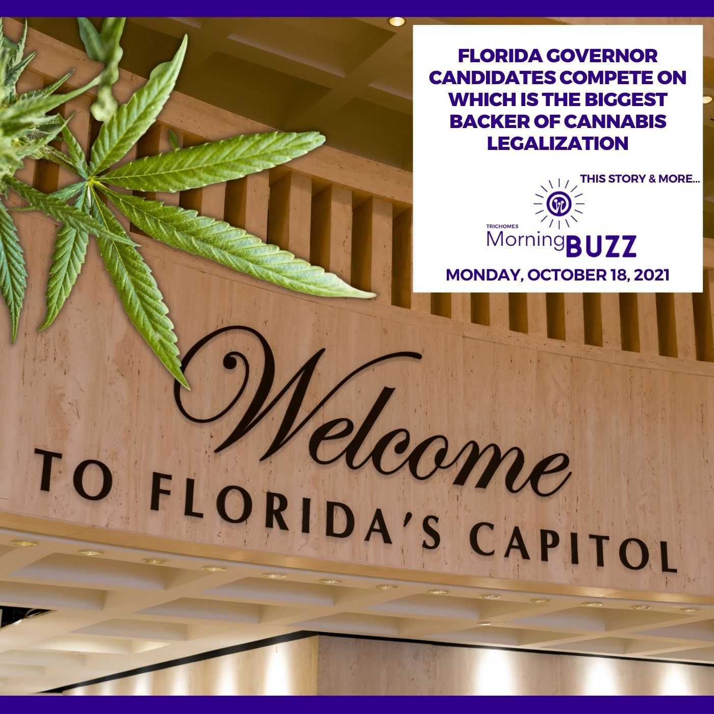 Florida Governor Candidates Compete On Which Is The Biggest Backer Of Cannabis Legalization show art