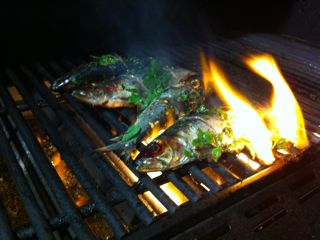 Recipe of the Week: Grilled Little Fish