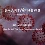 Artwork for How To Kill The New Coronavirus Part II