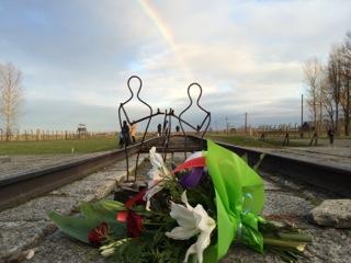 Auschwitz Reflections