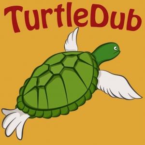 The TurtleDub Podcast