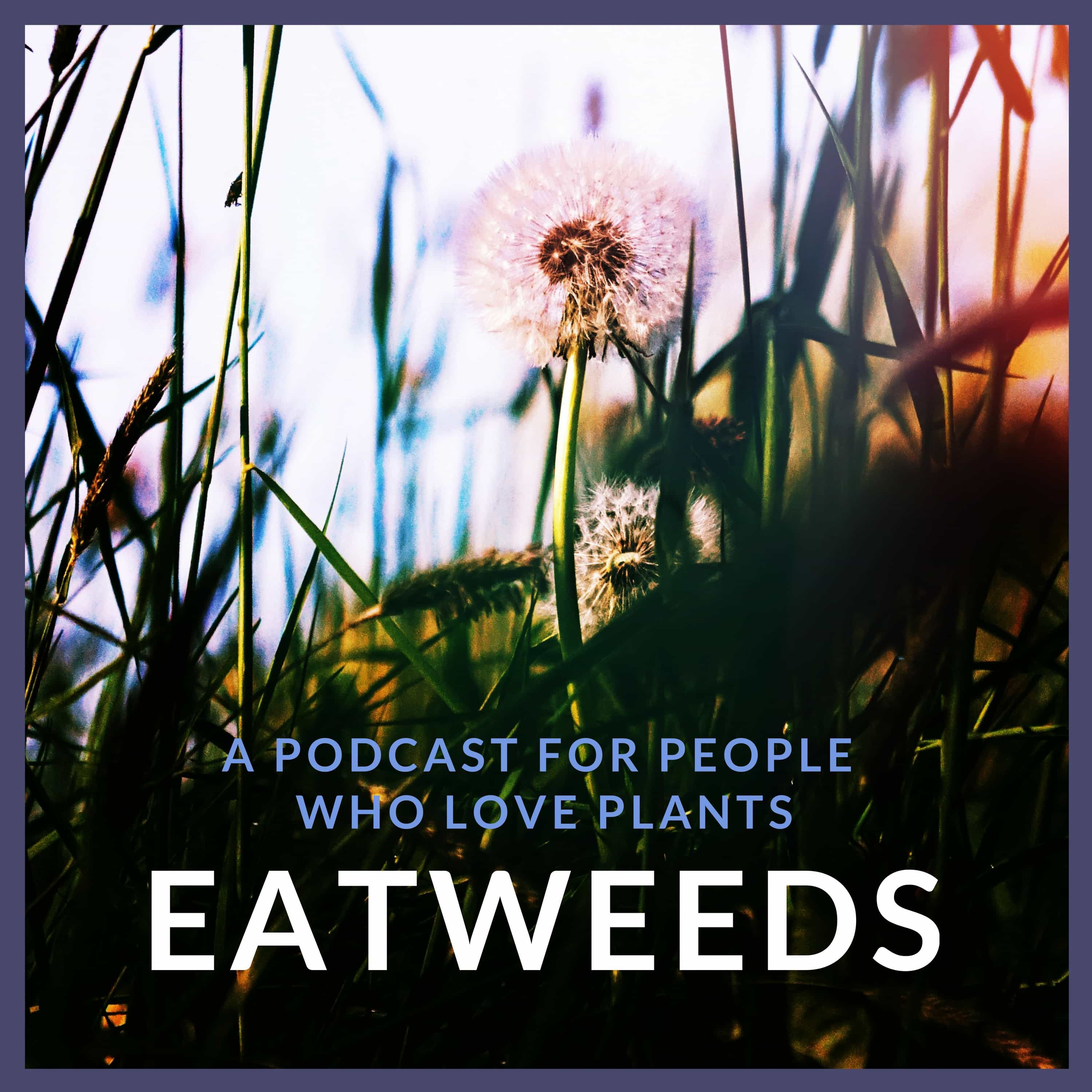 Eatweeds Podcast: For People Who Love Plants show art