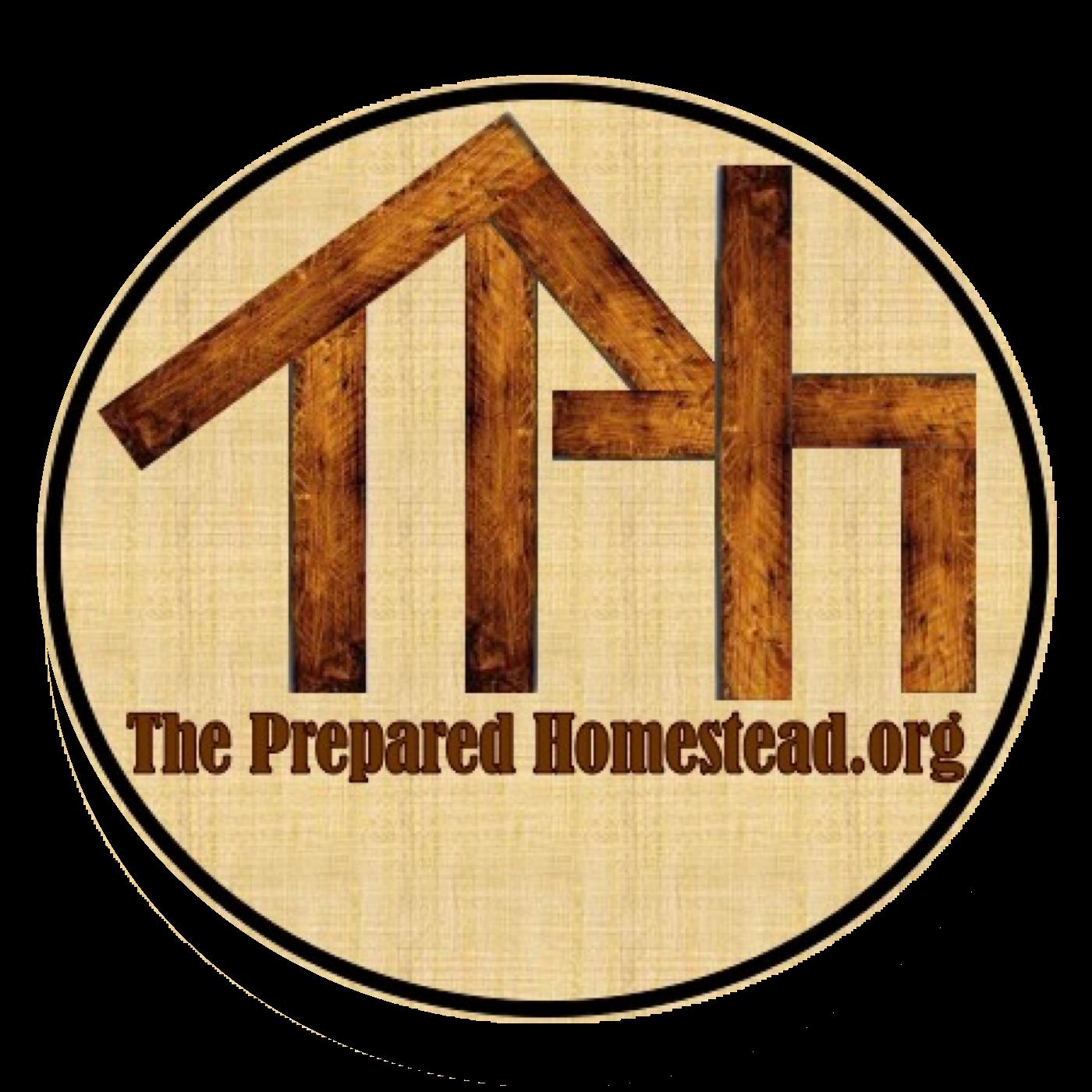The Prepared Homestead show art