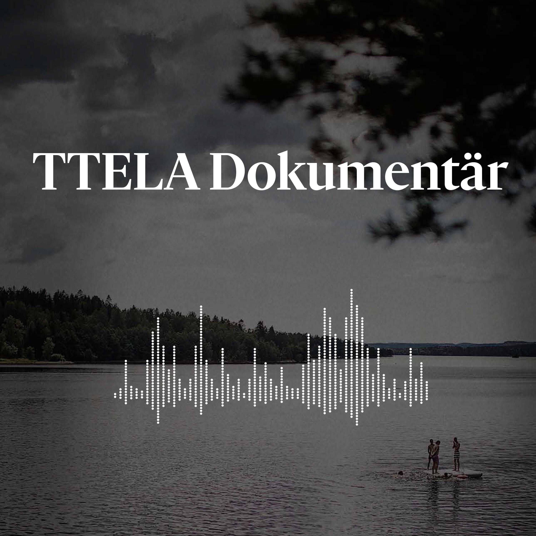 TTELA Dokumentär show art