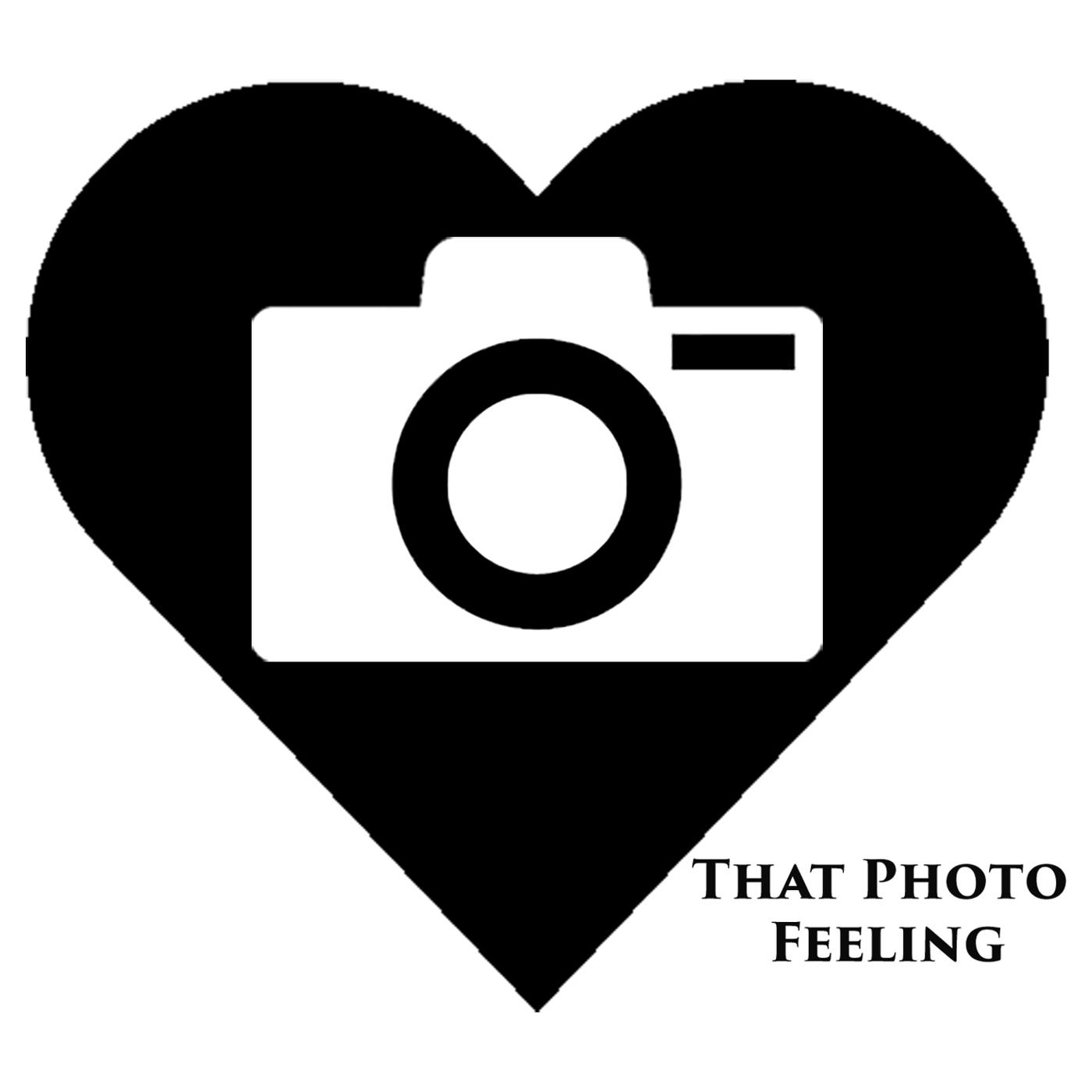 That Photo Feeling show art