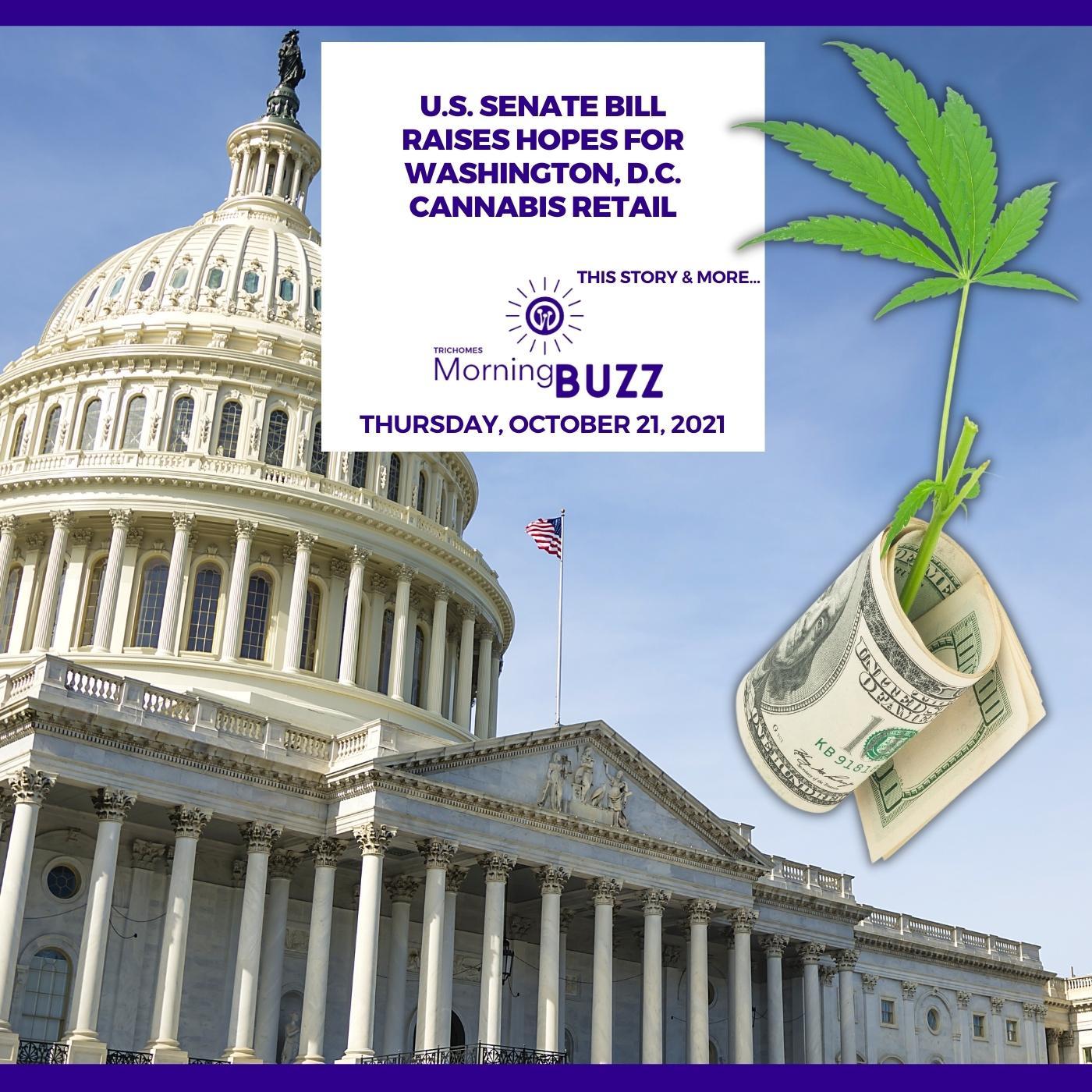 U.S. Senate Bill Raises Hopes For Washington, D.C. Cannabis Retail show art