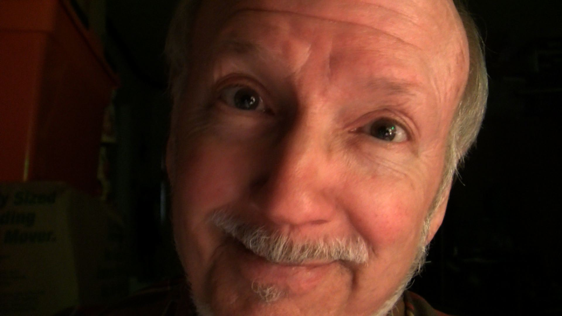 """Artwork for """"WHO'S IT ALL ABOUT, SELFIE?"""" [VIDEO] by Loose Bruce Kerr"""