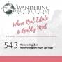 Artwork for Episode 54.3: Wandering Zen - Wandering Borrego Springs