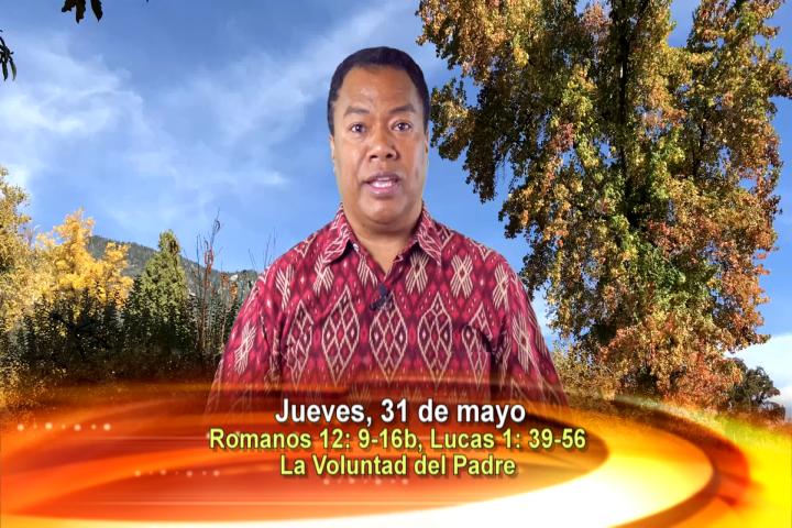 Artwork for Dios te Habla con  Padre Gerardus Bere SVD