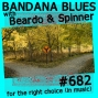 Artwork for Bandana Blues #682 Hmmmm....