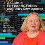 Artwork for A Guide To EU Financial Politics and Policy Development