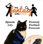 Artwork for My Fantasy Wife Ep. #167: Gary's 4th Annual Fant Football League Draft Overview & Friend Alienation Special