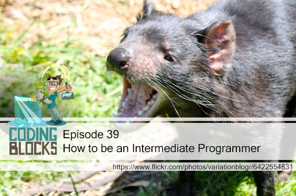 How to be an Intermediate Programmer