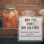 Artwork for Episode 2: Bird Flu, Babies, and Bacteria