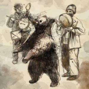 Shoot the Dancing Bear!