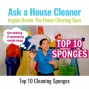 Artwork for Angela Brown's Top 10 Sponges for House Cleaning