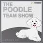 """Artwork for The Poodle Team Show Episode 73 """"Mentor Backlash"""""""