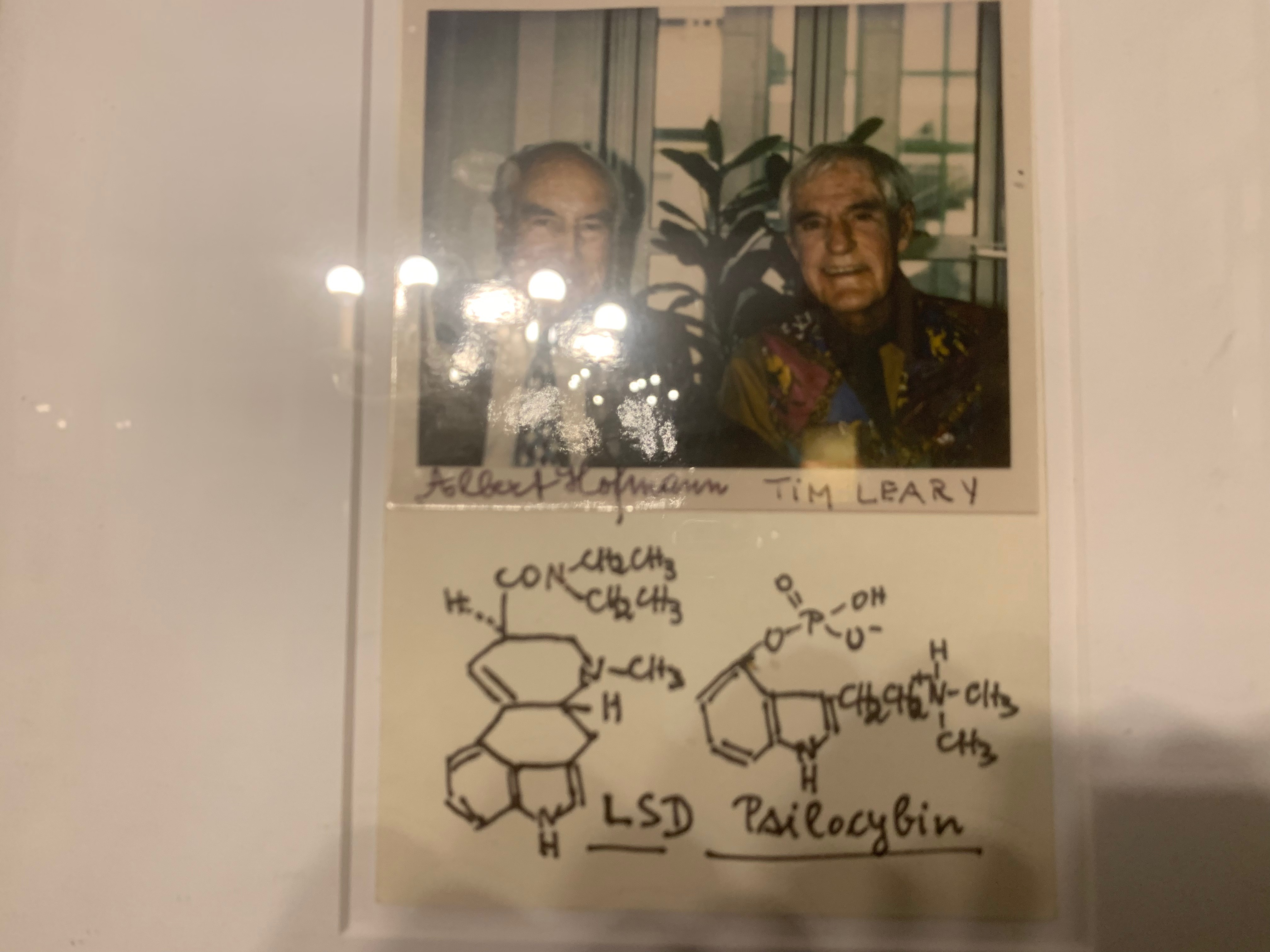 A photograph of Timothy Leary and Albert Hoffman from the Mark McCloud's collection.