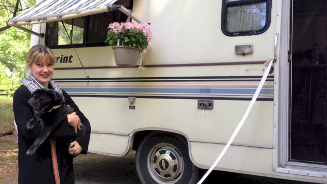 Artwork for TDJtv: Meet our camper, Lillie