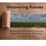 Artwork for Episode 9: Big Kansas Road Trip Pop Up Restaurant