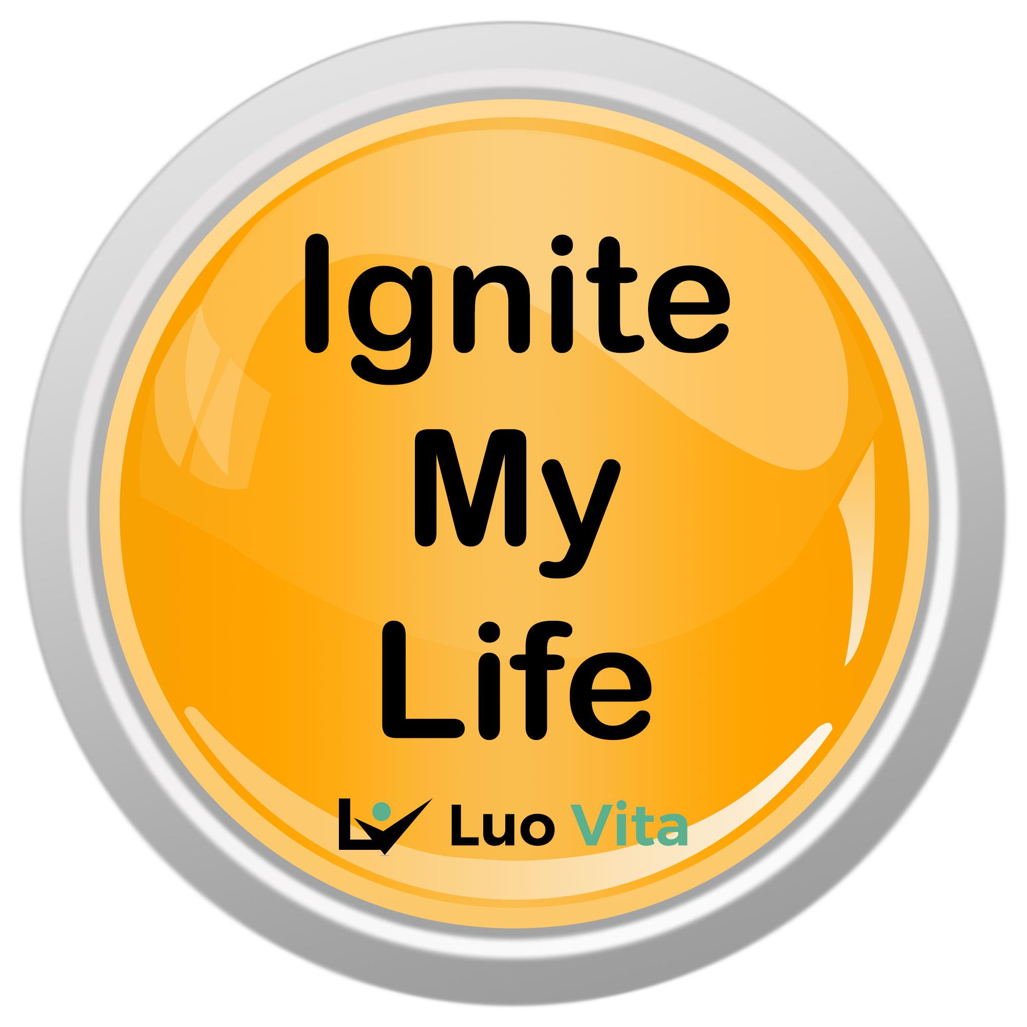 Ignite My Life show art