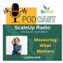 Artwork for Measuring What Matters For Your Business