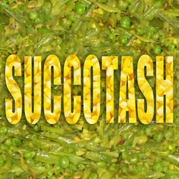 Succotash (Dress Rehearsal #2)