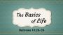 Artwork for The Basics of Life(Pastor Bobby Lewis, Jr.)