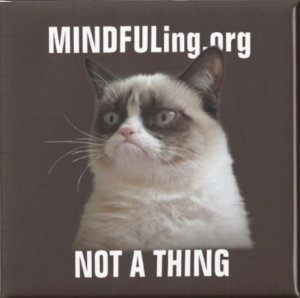 M#165 Mindfuling Not A Thing