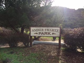 Amber Swartz Park