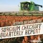 Artwork for Sorghum Checkoff Quarterly Report - 1st Quarter 2019