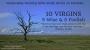 Artwork for Parables: 10 Virgins