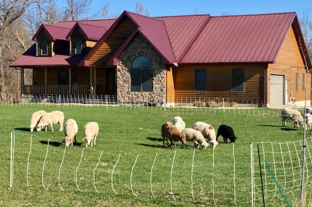 Blue Dasher Farm