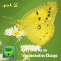 Artwork for 058: Don't Give Up on Transformative Change