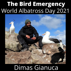 038 World Albatross Day 2021 - Dimas Gianuca is protecting the Albatross and seabirds in the Atlantic waters of Brazil