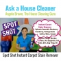 Artwork for Spot Shot Instant Carpet Stain Remover Product Review