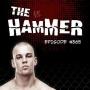 Artwork for The Hammer MMA Radio - Episode 365