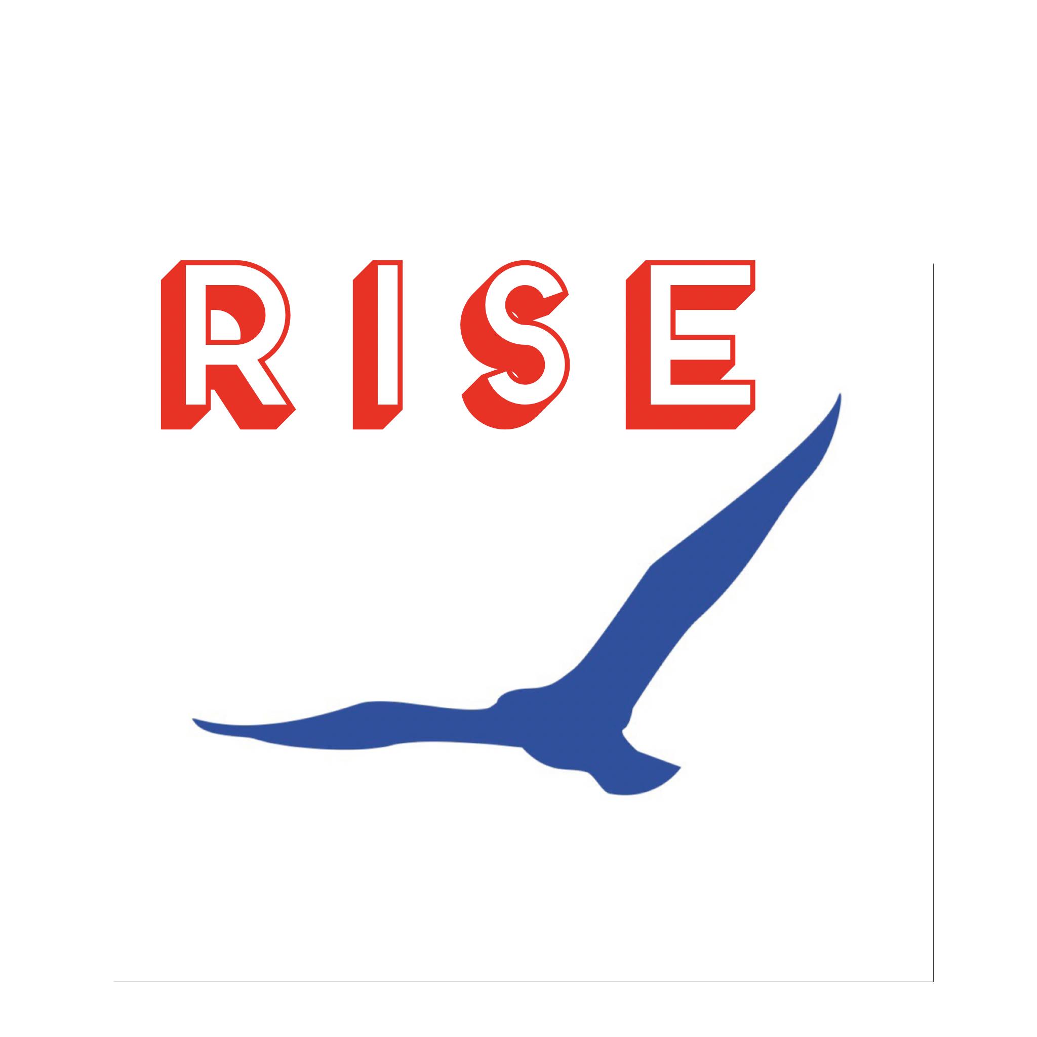 Rise 2 Realize show art
