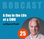 Artwork for A Day in the Life of a CMO (Chief Marketing Officer)
