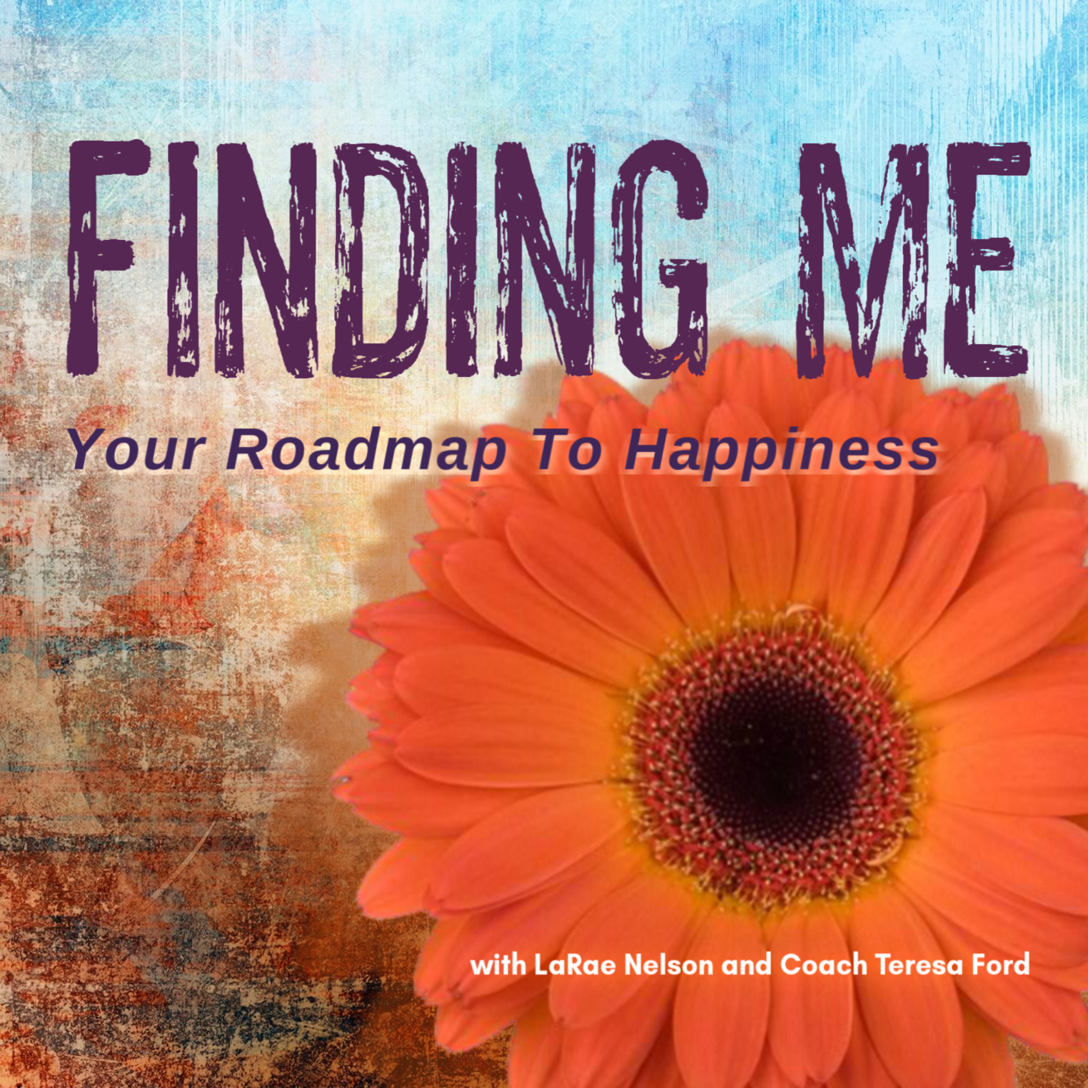 FINDING ME: Your Roadmap to Happiness show image