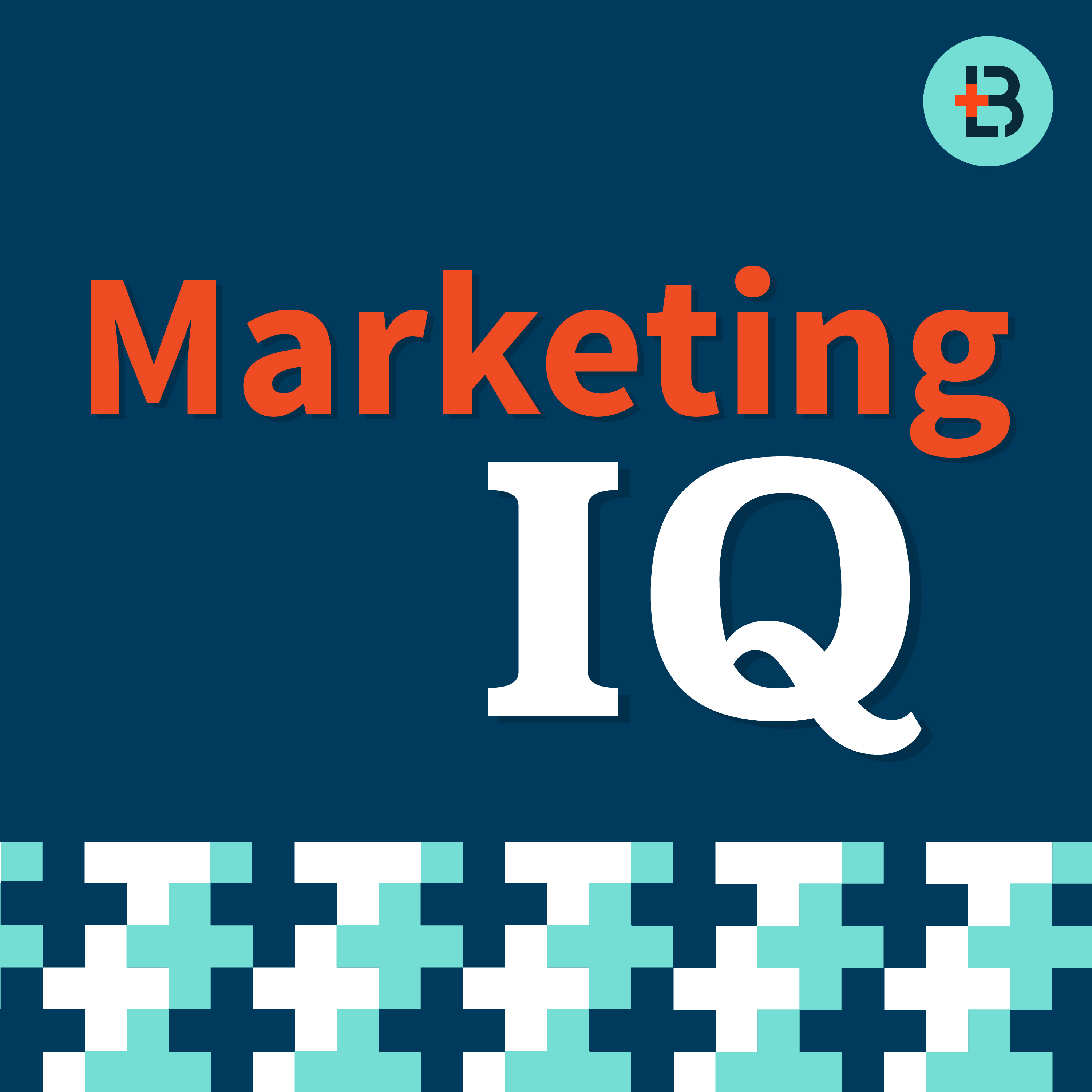 Artwork for Marketing IQ #7: Website Design, E-newsletters + Playing in a Band